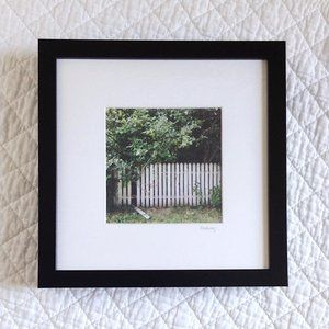 """Apple Orchard"" Framed 5x5 Photography"